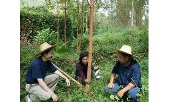 四川省免收森林植物检疫费