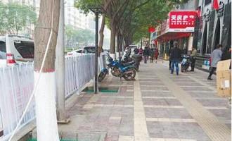 兰州庆阳:10条风格各异街道绿化提升本月底将完成