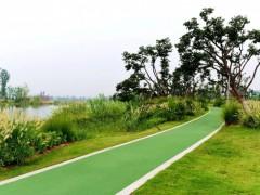 吉林:未来10年全省将完成森林生态修复2000万亩以上