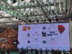 第十届新疆苗木花卉博览会云端开幕